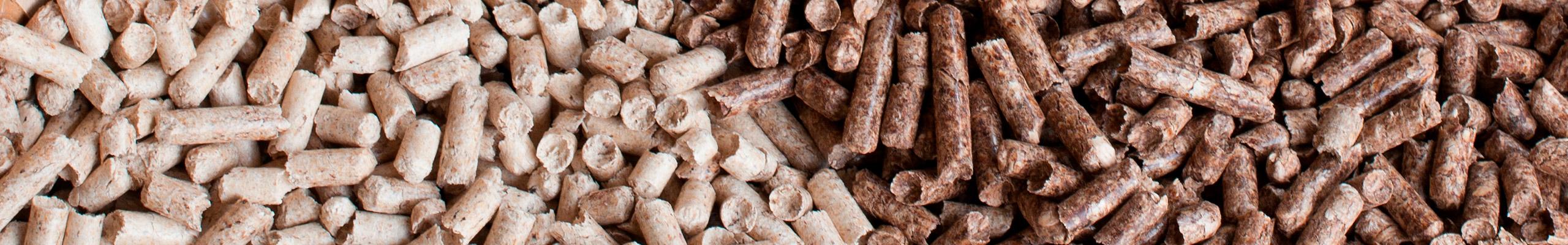 Membros da Rede Transfronteiriça de biomassa